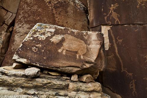 Shay Canyon Mastodon