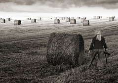 Photographer's world (paul indigo) Tags: photographer graphic hay bails