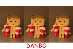 my danbo screensaver (gigsnapper.com) Tags: danbo canon60mmefsmacrolens revoltech canoneos450d amazonjp danboard revoltechdanbo