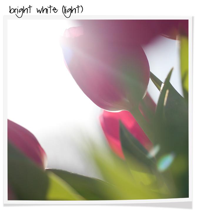 bright_white