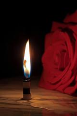 Unrequited (Jay:Dee) Tags: flower rose fire glow candle saveme flame hero winner lostlove unrequited bigmomma ultraherowinner
