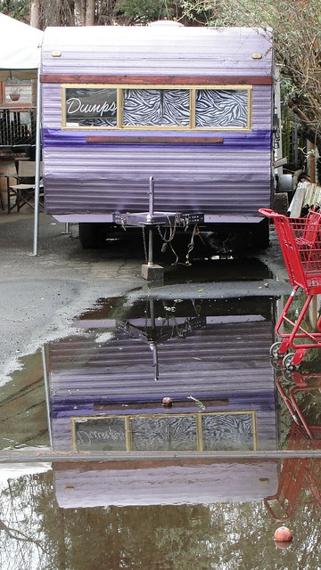 A dilapidated motor home, painted purple, with a neon sign in the rear window saying 'Dumps' and a bright red shopping cart, all reflected in a large puddle