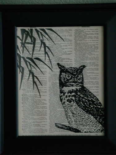 owl on dictionary page