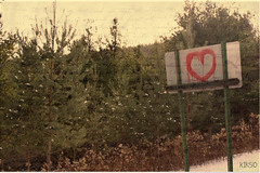 that's the power of love (kirsten grace :)) Tags: trees texture sign writing photo heart kali gimp smith adventure script kirsten spicer kirs10