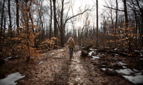 フリー写真素材, 人物, 人と風景, 森林, 後ろ姿,