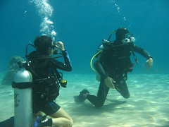 February_2011 (27) (acmt2001) Tags: sea woman fish coral underwater scuba diving bikini reef swimsuit eilat bathingbeauty              redsea