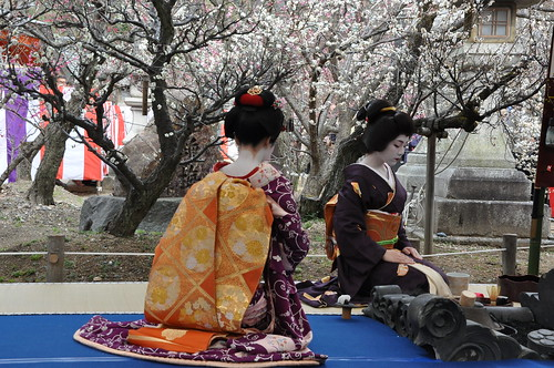 Tea Ceremony -- geiko Ichiteru-san (right) and maiko Umechiho-san (left)