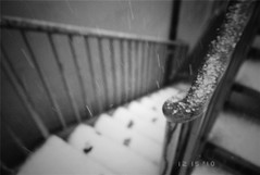 Snow (picozhang) Tags: winter bw snow film stair fuji     naturaclassica