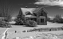 Too Cold At Home (Wild Country Photos) Tags: snow homestaed bearlakevalley oldhousesidaho