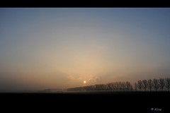 On a cold early morning (Just me, Aline) Tags: light sky holland netherlands silhouette clouds sunrise licht early nederland wolken dordrecht lucht vroeg zonsopkomst