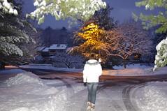 Night starts to fade (JordynsAzombie) Tags: winter white snow tree night branches snowybranches snowatnight