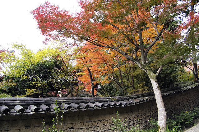 20101117_120058_唐招提寺