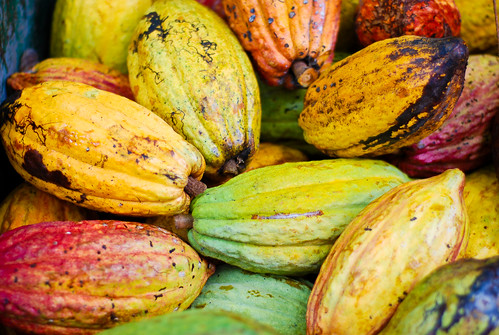 Costa Rica. On the Chocolate Tour by EverJean, on Flickr