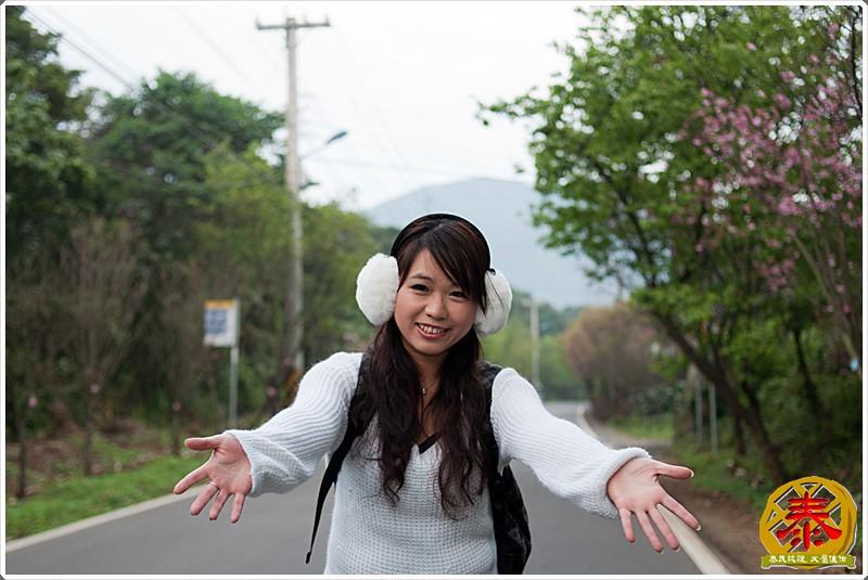 2011-03-06 滬尾櫻花步道a (9)