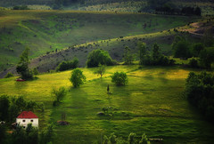 Zlatibor landscape (ceca67) Tags: trees light house mountain green nature landscape hill serbia ceca zlatibor naturepoetry selectbestexcellence sbfmasterpiece sbfgrandmaster