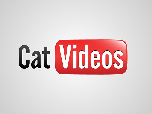 You Tube / Cat Videos