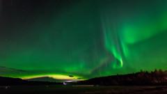 Aurora borealis (JH') Tags: nikon nikond5300 nature northernlights d5300 exposure trees tree auroraborealis aurora autumn sky sigma sweden 1020 2016 fall field heaven landscape longexposure borealis