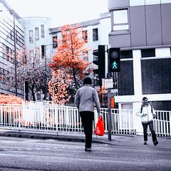 Happy as the Green Man (Sheffield_Streets) Tags: sheffieldstreets greenman spring strangers road crossing stride bag happy sheffield autumn danscape streets walk