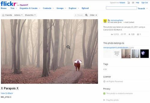 Pinterest4 dodawanie przez skryptoz