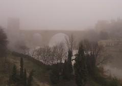 Puente de san Martn - Niebla 5 (to311235) Tags: toledo niebla riotajo puentedesanmartn