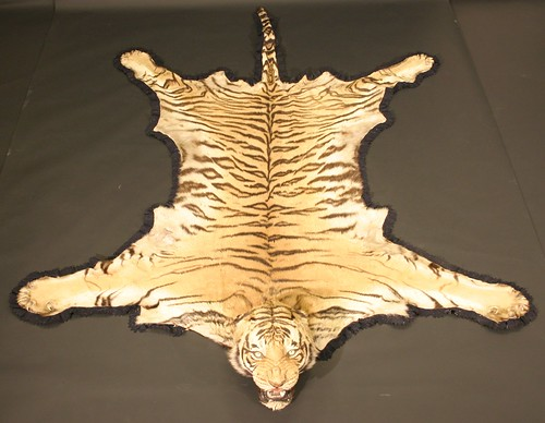 This tiger skin achieved £4,200
