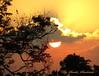 Golden Sun Glorifies the Sky (Sunciti _ Sundaram's Images + Messages) Tags: sunset sky sun tree yellow sunrise landscape gold 1001nights soe silhoutte sow clound brightspark surrise blueribbonwinner 10faves 5photosaday beautifulexpression abigfave colorphotoaward impressedbeauty aplusphoto agradephoto flickraward flickerdiamond inspirationhappiness eperke brillianteyejewel concordians brilliantphotography rubyphotographer fabulousflicks abovealltherest mallimixstaraward artofimages capturethefinest winklerians 1001nightsa