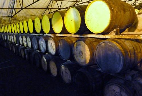 Maturing Whisky at Auchentoshan