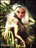 BDNTM Next Theme: Mythical Creatures (Marjorie as Bowtruckle) op.1/3 (Carol Parvati ™) Tags: doll soccer marjorie picnik bratz cloe playsportz carolparvati