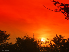 sunset #3 (e.nhan) Tags: life light red art nature landscape colorful colours arts backlighting enhan