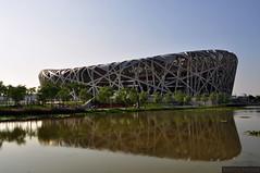 北京国家体育场, Ptasie gniazdo