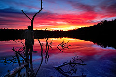 """""""Walking on a Sunset""""  Norway Lake, Michigan's ottawa National Forest (Michigan Nut) Tags: blue sunset red usa reflection geotagged photography wideangle treebranches silhoette recent deadfall ottawanationalforest d700 michiganlandscapes nikon1635mmf4gedafsvrwideanglezoomlens"""