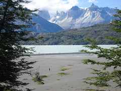 chile torres del paine 238 (chupee_1) Tags: chile patagonia torresdelpaine