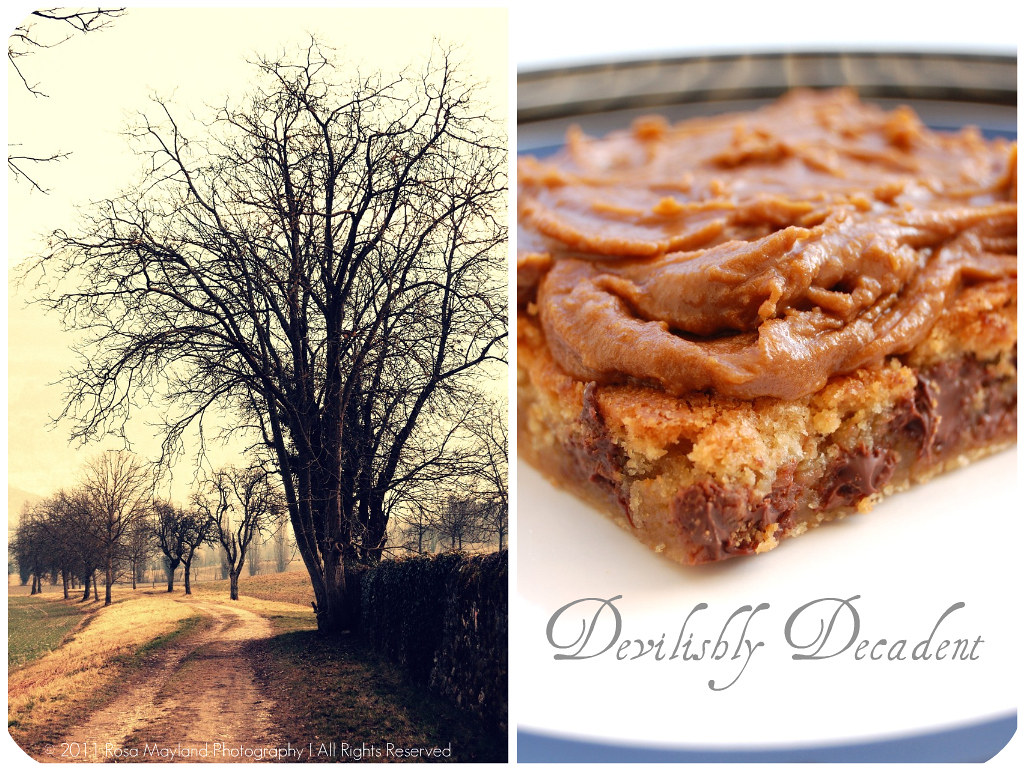 pB Cookie Picnik collage 2 bis