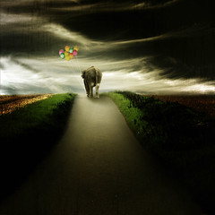 ~ leaving ~ (~ Pixel Passion ~) Tags: new light wild sky elephant leave field grass animal clouds dark balloons landscape leaving sadness alone loneliness gloomy sad darkness path nobody beginning finish end lonely alive concept goodbye conceptual vignette pathway darkart lonesome manipulate truthandillusion