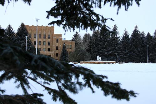 University of Wyoming, in Snow