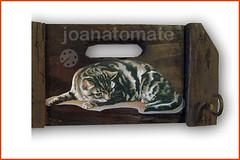 gancho gato (joanatomate) Tags: tiara flores santaluzia mandala feltro guadalupe madeira fita gancho trevo sãofrancisco oratório portachave matrisoka sãojudas coraçãotecido