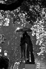 Pareja paseando bajo un paraguas (jmsoler) Tags: blancoynegro bn explore otoo octubre 2010 a3b fzfave jmsoler nikond300s retofez110222 retoafz20111125