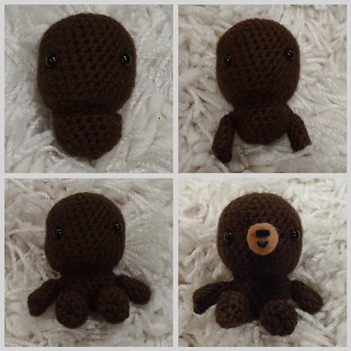 Brown bear with scarf
