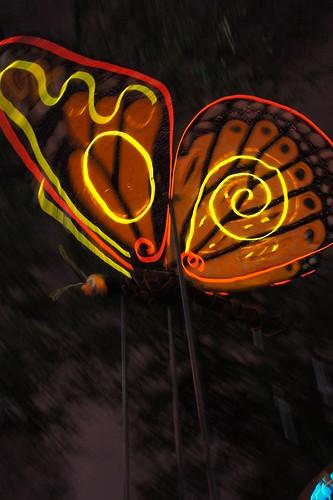 Lit Butterfly