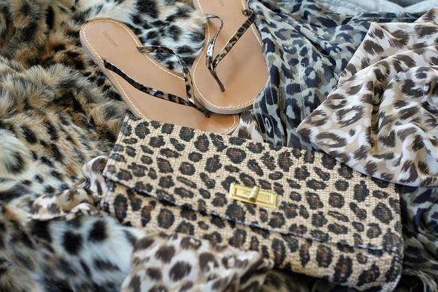 misson: get more leopard