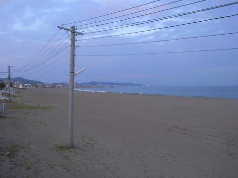 三浦海岸と河津桜