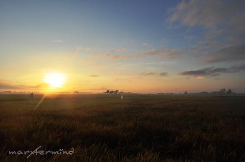 Bula_Sunrise (1)