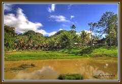 Campo Toraja (CANNIVALS) Tags: trekking indonesia landscape barco sony valle paisaje casas sulawesi toraja embrujo a700 rantepao tipicas abigfave casasbarco torajahouse