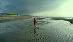 Leon (Harry Mijland) Tags: dearharry harrymijland nederland holland texel wadden leon