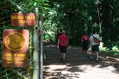 Manoa Fall Trail Photo