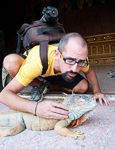 Tripode e iguana