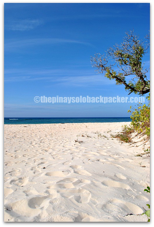Apo Reef beach photo