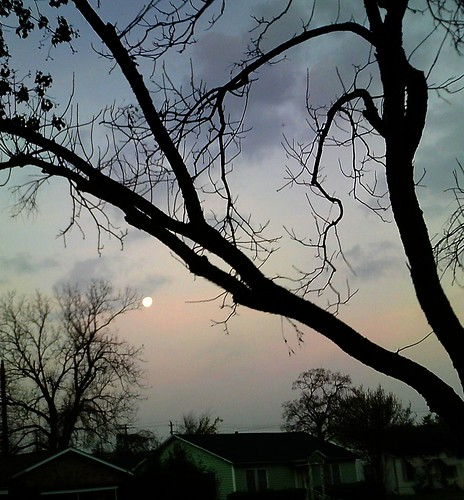 Moonset. by Sue Cody, March 21, 2011
