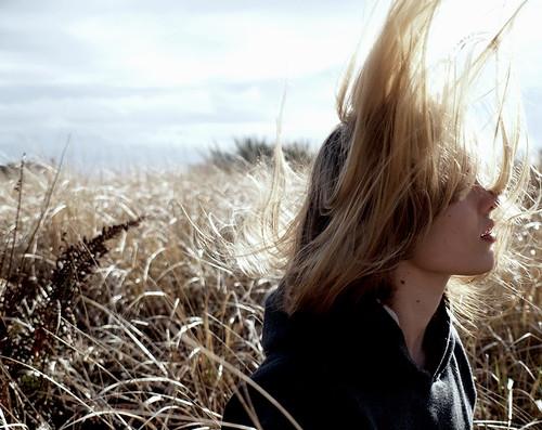 フリー写真素材, 人物, 女性, 草原, 髪がなびく,