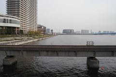 DSC02461 (HODGE-PARROT) Tags: japan tokyo  toyosu
